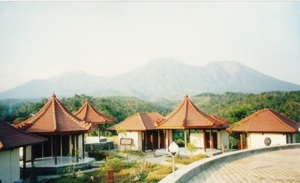 The Theravada Bhikkhu Sangha in Indonesia