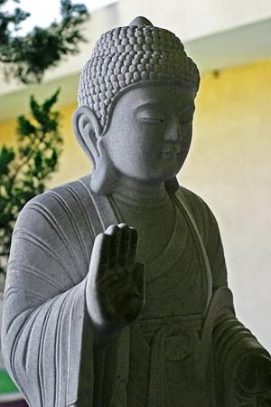 Lightmatter Buddha